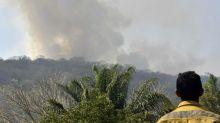 Bolivia y Paraguay, también bajo crítica por la deforestación y los incendios