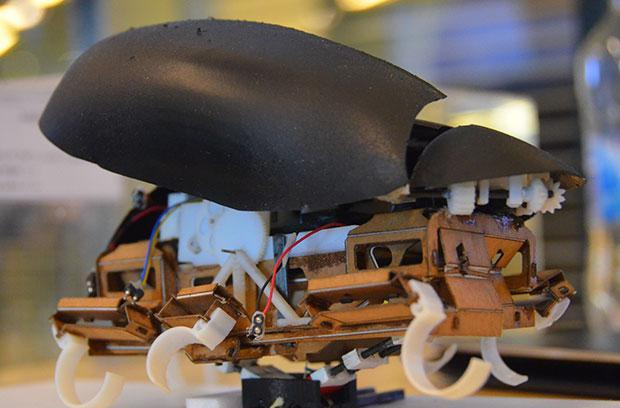 Latest robot roach can leap like the real thing