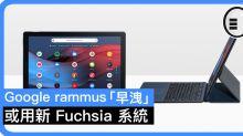Google rammus「早洩」,或用新 Fuchsia 系統