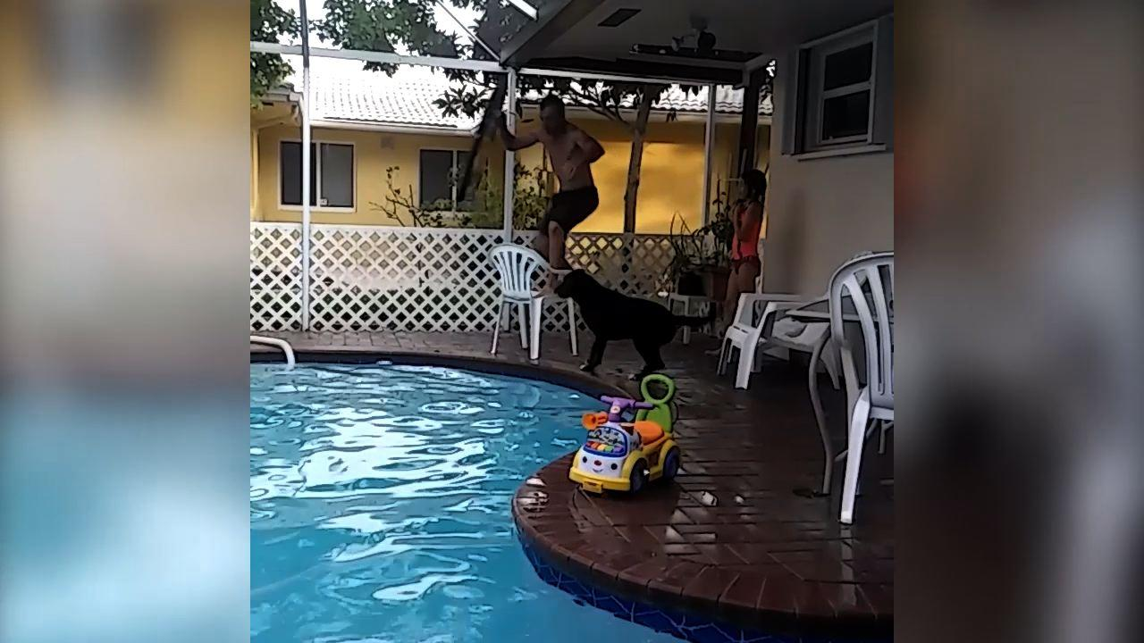 Dad 39 s epic pool fail video for Epic pool show
