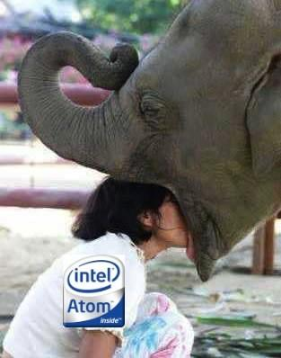 NVIDIA: Intel's Moorestown is like an elephant on a diet, iPad set bar too low