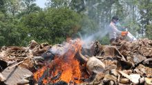 Nepal torches valuable wildlife parts