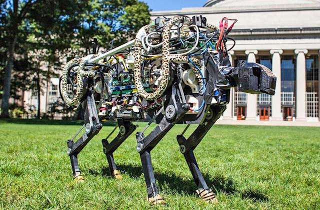 Six robots inspired by real-life animals