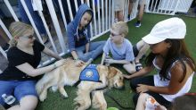 Jacob the comfort dog has now helped support survivors at three different mass shootings