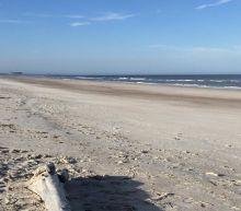 Shark Attacks Injure 2 at Florida Beach: Reports