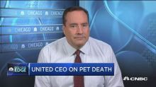 United reviews pet transport options