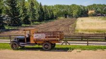 10 Best Agriculture Stocks to Invest In
