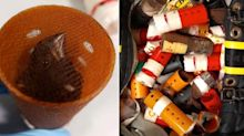 Man smuggled 34 finches into US in hair curlers