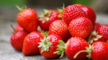 Strawberries Might Reduce the Mental Effects of Aging