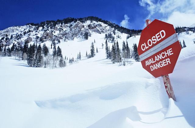 Cybercrime network 'Avalanche' shut down in global sting