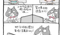 mandycat office:雜炒