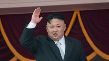 N. Korea hails 'largest ever' firing drill