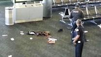 Gunman Kills TSA Agent at LAX, Injures 2 Others