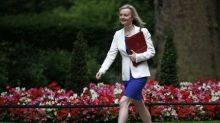 Britain's exit from EU irrevocable once triggered: minister
