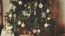 Manche Leute stellen schon jetzt ihre Weihnachtsbäume auf – ist das zu früh?