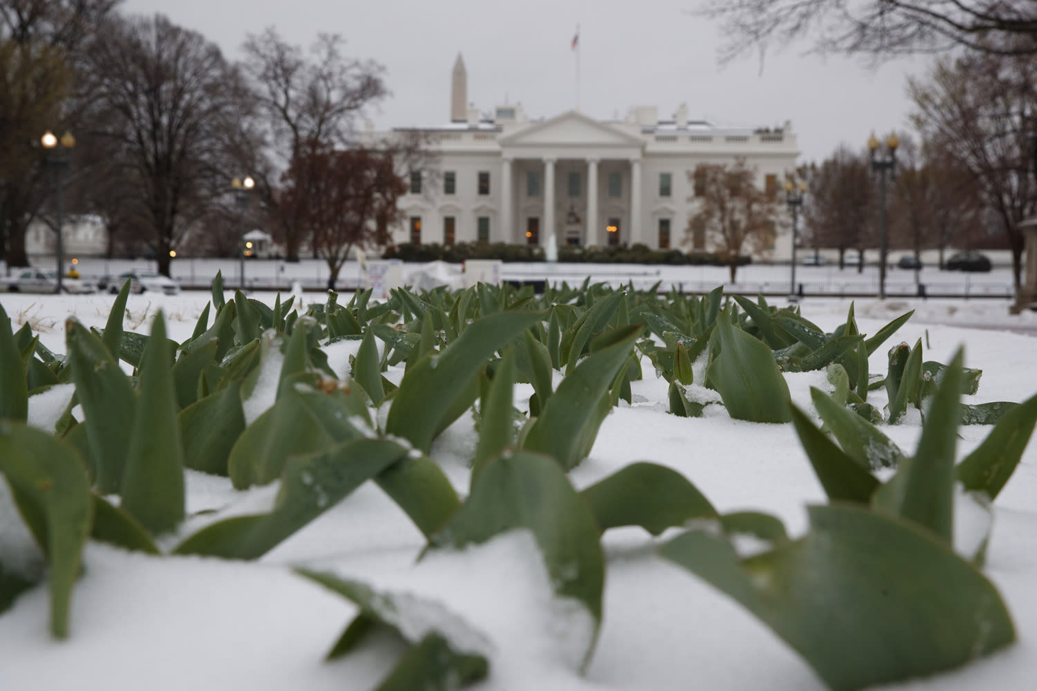 <p>Snow covers the ground in Lafayette Park across from the White House in Washington, Tuesday, March 14, 2017. A late-season storm is dumping a messy mix of snow, sleet and rain on the mid-Atlantic, complicating travel, knocking out power and closing schools and government offices around the region. (Evan Vucci/AP) </p>