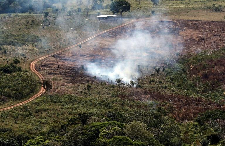 A handout picture from Colombia's Defence Ministry shows smoke billowing from the Sierra de La Macarena National Natural Park, Colombia, in 2019. The Latin America country has lost hundreds of thousands of hectares of forest in recent years