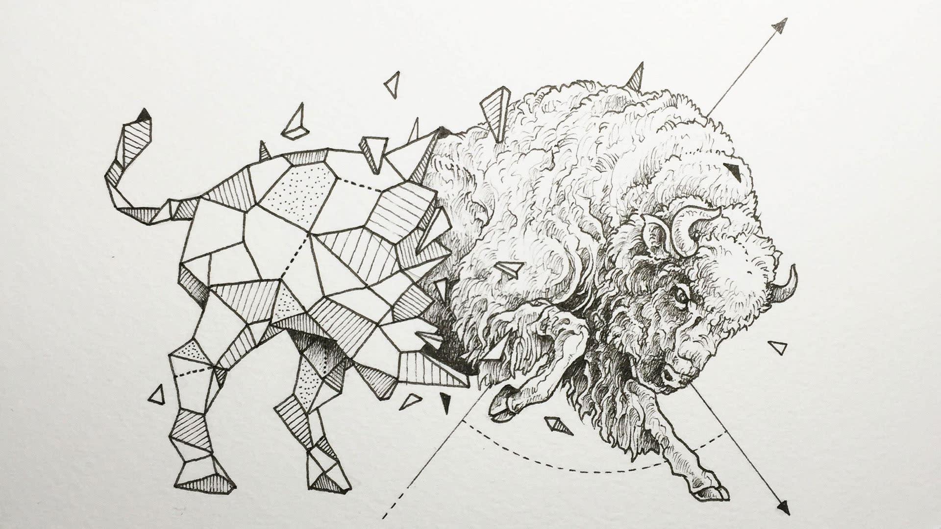 Geometric Animal Wallpaper 74 Images: Animals Meet Geometry In Striking Illustration Series