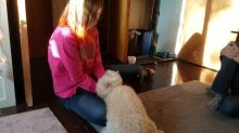 Girl and her dog reunite after being apart for weeks
