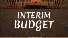 What is an Interim Budget?