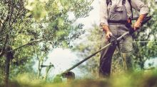 Best String Trimmers of 2019