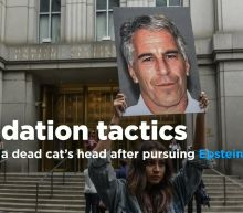 Former Vanity Fair editor in chief is said to have found a dead cat's head outside his home after the magazine began pursuing Epstein story