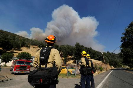 Firefighters on a structure protection team watch a plume of smoke grow from the Ranch Fire (Mendocino Complex) in the hills north of Upper Lake, August 1, 2018. REUTERS/Fred Greaves