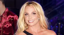 Britney Spears Sold a Flower Painting for $10,000 to Benefit Las Vegas Shooting Victims