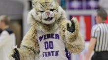 Why Your Mascot Sucks: Weber State