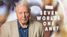Sir David Attenborough wins an Emmy for work on Seven Worlds, One Planet