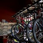 Local bicycle stores seeing increase in demand