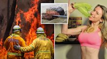 'Wake up and smell the carcass': Vegan blogger blames bushfires on meat-eaters
