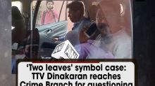 'Two leaves' symbol case: TTV Dinakaran reaches Crime Branch for questioning