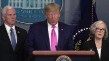 Trump puts VP Mike Pence 'in charge' of U.S. coronavirus response