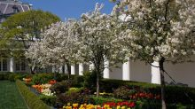 How Did the White House Rose Garden Become a Political Tool?