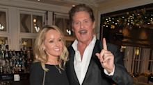 David Hasselhoff ditching the States - for a sheep farm in Wales