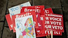 These are the seven tribes of Brexit - and what they want