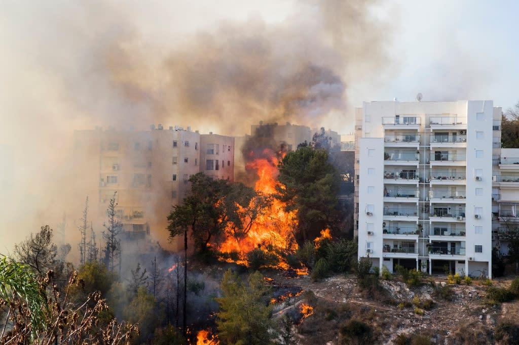 Flames 10 metres (more than 30 feet) high were threatening several multi-storey tower blocks in Haifa (AFP Photo/Jack Guez)