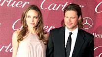 Brad Pitt Responds to Melissa Etheridge's Comments Against Angelina Jolie