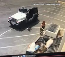 Woman Caught on Video Dumping Seven Newborn Puppies into Dumpster in Coachella