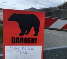 Rare spate of bear attacks leaves two dead in Alaska