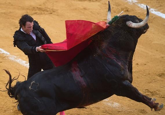 These money and investing tips are timed for a bull market that looks short on time