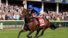 Horse Racing: Harry Angel back in work and on course for Darley July Cup