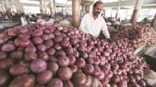 Maharashtra: Onion prices see downward trend as chorus grows for exports