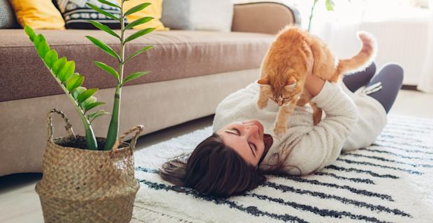 Subletting your rental: The full breakdown
