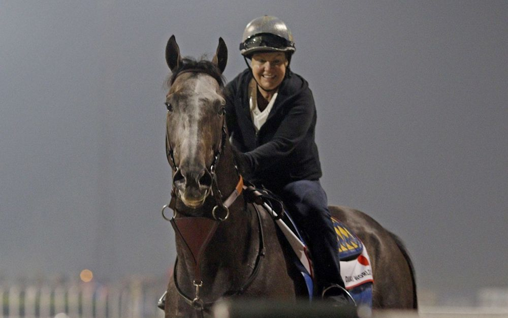 Arrogate is 1-3 to win the 22ndDubai World Cup at Meydan on Saturday - Rex Features