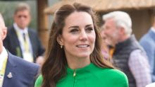Kate Middleton Literally Just Wore Butterfly Clips