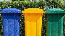 Bin cleaning tips to keep bugs and smells at bay