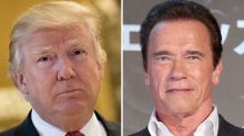 Arnold Schwarzenegger Pinpoints Trump's Biggest Flaw: 'Not Being Able to Shift From Trump to President'
