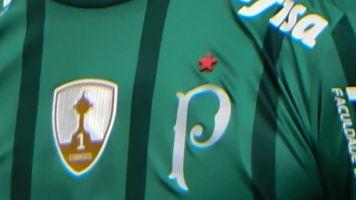 Jornalista tenta confirmar Mundial do Palmeiras